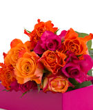 Pile of roses in box Royalty Free Stock Images
