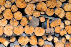 Pile of round firewood for the furnace Stock Images