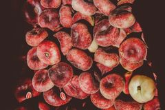 Pile of Round Red Fruits Stock Images