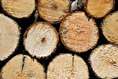 Pile of round stacked logs for firewood. Horizontal closeup Royalty Free Stock Photos