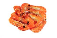 Pile of royal shrimp. Many royal shrimp isolated on white Royalty Free Stock Image