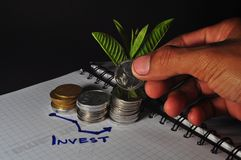 Pile of Indonesian coin and chart. Investment. Plant growing on coin royalty free stock image