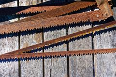 Rusty bow saw blades lying on a workbench stock photo