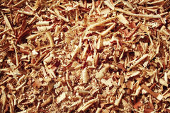 Pile of sawdust macro. Closeup image of wooden filings. Stock Photos