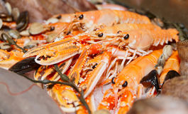 Pile of scampi on fish market Stock Photo