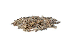 Pile of scattered caraway seeds. On white background Royalty Free Stock Photos