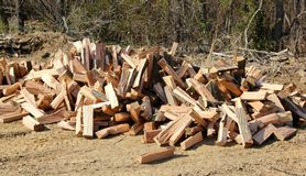 Pile of Seasoned Firewood Royalty Free Stock Photo