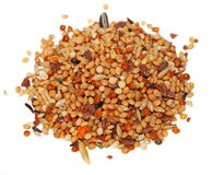 Pile seeds and fruits for birds Royalty Free Stock Photos