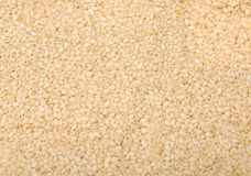 A pile of sesame seeds Stock Photography