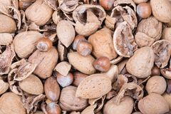 Pile of several nuts and nutshells Royalty Free Stock Image