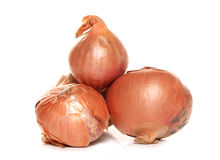 Pile of shallots Stock Photo