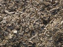 Sharp splinters of wood Stock Image