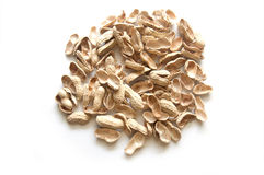 Pile of shell peanuts Royalty Free Stock Photography
