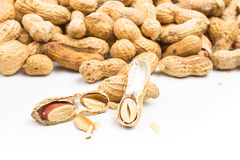 A pile of shelled big peanuts with some cracked open on white ba Royalty Free Stock Photos