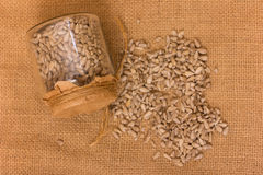 Pile of shelled sunflower seeds Stock Images
