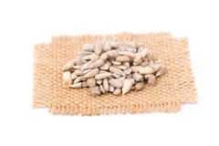 Pile of shelled sunflower seeds,  Royalty Free Stock Photos