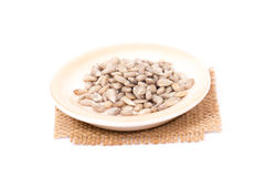 Pile of shelled sunflower seeds,  Stock Photography