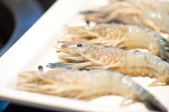 Pile of Shrimp. In white dish Royalty Free Stock Photos