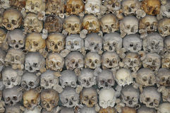 Pile of skulls Stock Images