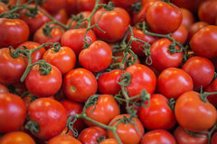 Pile of small red tomatoes. Royalty Free Stock Images