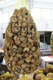 Pile of snail shells in market place in Lisbon Stock Photography