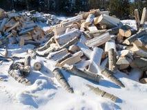 pile snow under trä Arkivbild