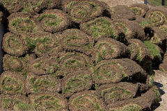 Pile of sod rolls Stock Images