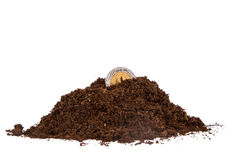 Pile of Soil and Coin Royalty Free Stock Photo