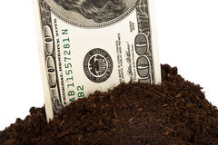 Pile of Soil and Dollar Bill Royalty Free Stock Image