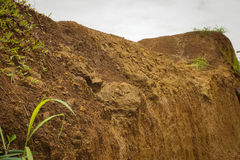 Pile of soil with grass photo taken in Bogor Indonesia Royalty Free Stock Photo