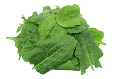 Pile of Spinach Leaves Royalty Free Stock Photo