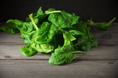 Pile of spinach savoy Stock Photo
