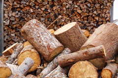 Pile of spruce firewood Stock Images