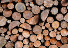 Pile of spruce wood Royalty Free Stock Image