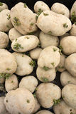 PIle Of Spud Potatoes Royalty Free Stock Photography