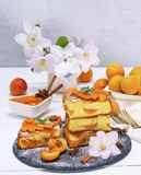 Pile of square pieces of a biscuit pie with apricots Stock Photography