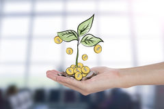 A pile of stack coin and growing sapling tree on hand Royalty Free Stock Photos