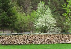 Pile or stack of fire woods. In the garden Royalty Free Stock Photos