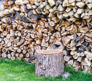 Pile of stacked cut logs. Closeup of a stack of cut logs for fuel with a tree stump in the foreground Royalty Free Stock Photos