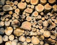 Pile of stacked wooden logs empty tops of wooden shelves, texture for background stock images