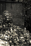 Pile of stones and a bush near the old little house. Toned Stock Image