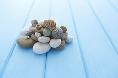 Pile of stones and a large sea shell royalty free stock image