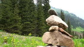 Pile of stones in the mountains - tour. The atmosphere of the forest. Green grass, coniferous trees, flowers, stones. The sky is covered with dark clouds stock video footage