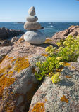 Pile of stones by the sea. Stock Images