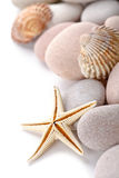 Pile of stones, shells and sea star Stock Images