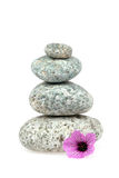 Pile of stones on white background. With a pink geranium flower stock image