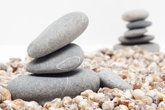 Pile of stones whith conch Stock Photos