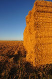 Pile of straw bales 2 Royalty Free Stock Images
