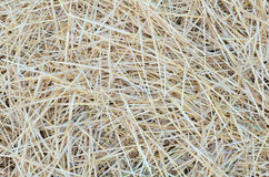 Pile of Straw Close-up. Pile of Straw on the Field after Wheat Harvest Close-up royalty free stock image