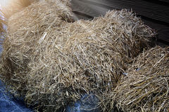 Pile of straw infront of wooden wall Royalty Free Stock Photo